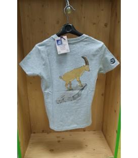 Tee-shirt GRIS enfant