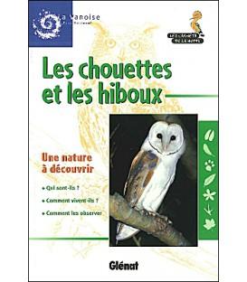 Carnet de la Huppe Chouettes et hiboux